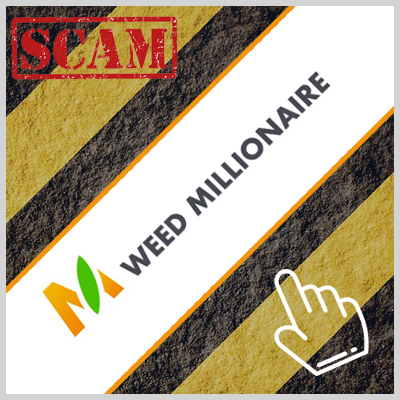 weed-millonaire
