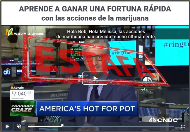 El video de Weed Millonaire es falso